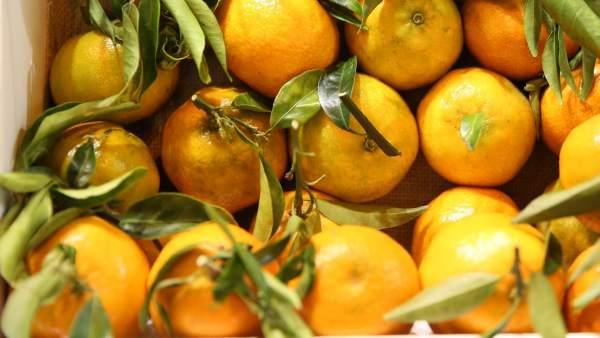 Frutas, fruta, naranja, naranjas