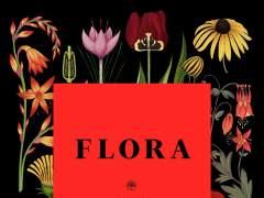 Nace FLORA, festival dedicado al arte floral en Córdoba