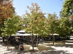 Las temperaturas suben el lunes en casi toda España y no se esperan lluvias