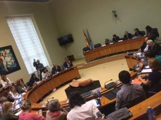 Reunión de la Diputación Permanente en el Pazo do Hórreo.