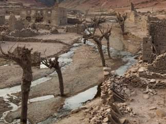 Las terribles huellas de la sequía en España