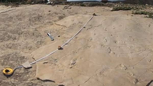 Huellas de 5,7 millones de años