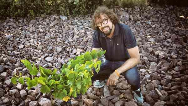 El viñador Fernando Mora, Master of Wine
