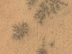 Las 'arañas' de Marte: un curioso fenómeno que no ocurre en la Tierra
