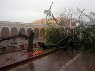 Los estragos de Irma en Cuba