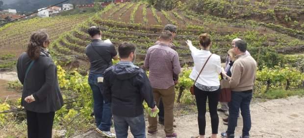 Importadores norteamericanos participan en una Misión Inversa con Canary Wine
