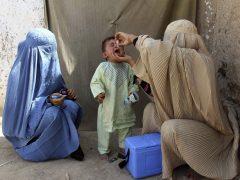 Científicos del MIT diseñan una vacuna de inyección única para erradicar del todo la polio