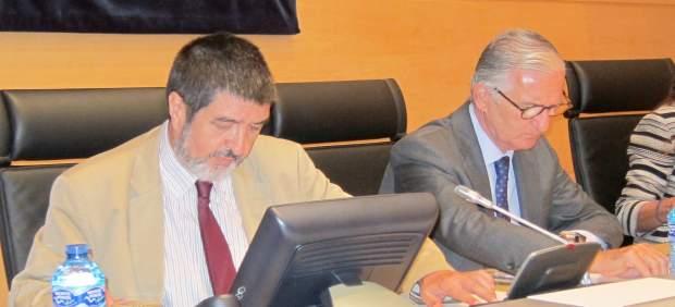 El presidente de la Comisión, Manuel Mitadiel, y el catedrático Alberto Alonso
