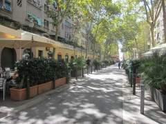 Detenidas 38 personas por hurto, drogas y robo con violencia en una redada en la Barceloneta