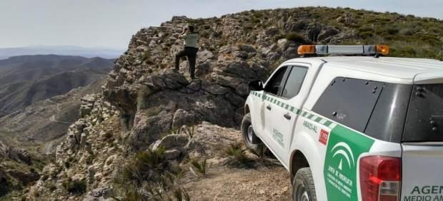 [L Comunicacion.Almeria.Dgob] Nota Y Foto Medio Ambiente Berrea