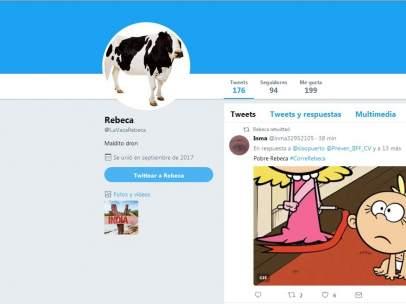 Vaca Rebeca