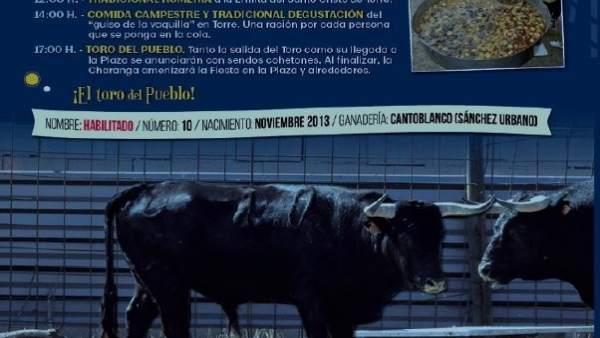 Imagen del cartel de fiestas del Ayuntamiento de Astudillo