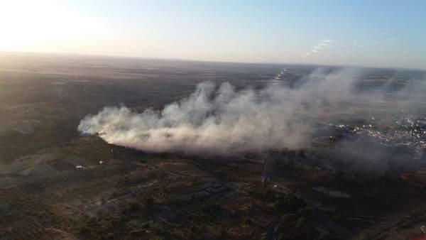Incendio forestal en Bonares (Huelva)