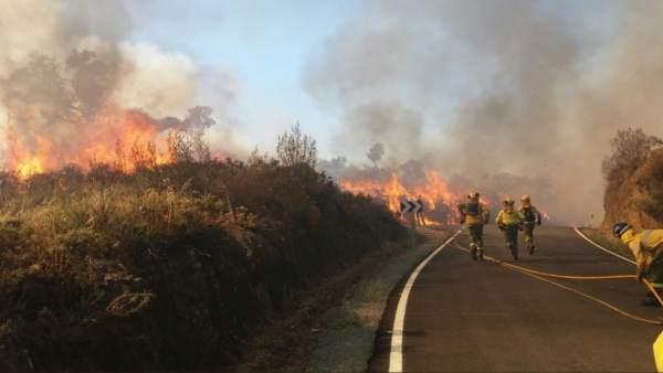 Incendio forestal de La Nava