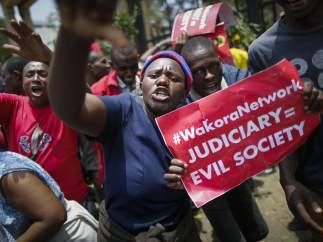Un ataque de abejas hace huir a manifestantes y policías de una protesta en Kenia