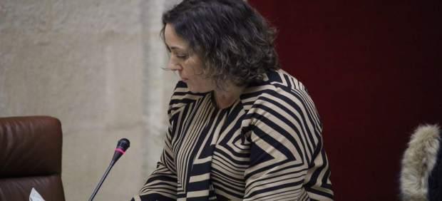 La parlamentaria de IULV-CA María del Carmen Pérez