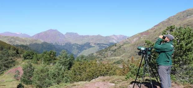 Técnicos de campo de SEO/BirdLife observando las aves