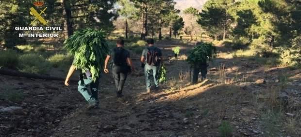 Operación para la detención de un francés fugado por supuesto asesinato