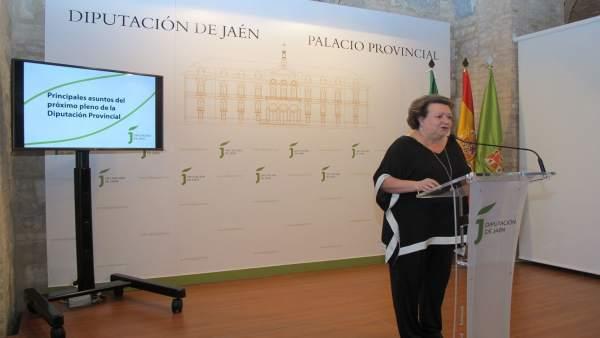 Parra informa sobre los principales puntos del pleno de la Diputación.