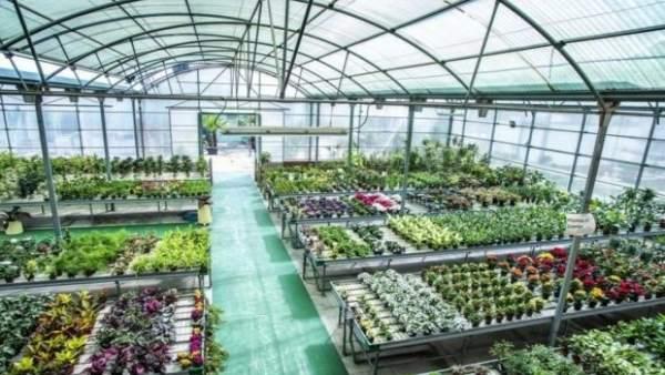 Vivero de Torremolinos plantas muestras convertir centro especial empleo natural