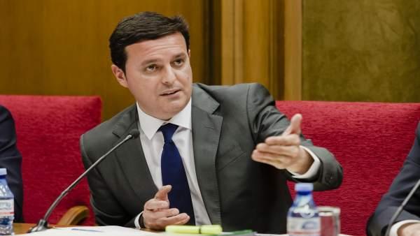 El vicepresidente de la Diputación, Javier Aureliano García.