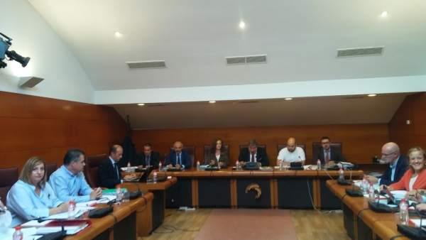 Administradores de Ecomasa en la comisión