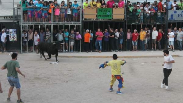 Dos joves, un d'ells menor, resulten ferits en els festejos taurins d'Almenara