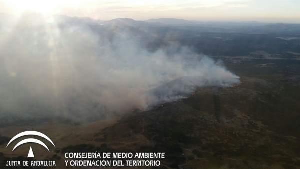 Infoca incendio forestal ronda las navetas zona militar