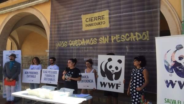 WWF acción de calle en Mercado del Olivar
