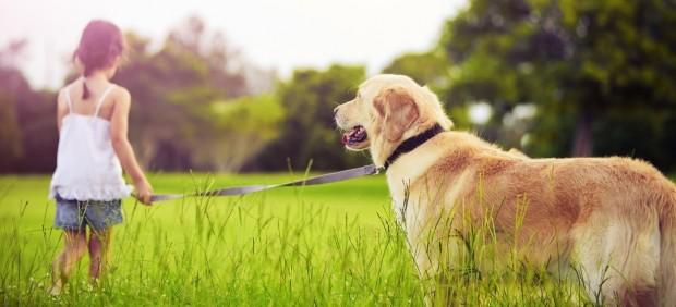 Niña paseando a su perro