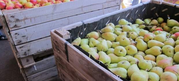 Fruta afectada por el veto ruso