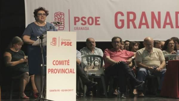 La secretaria general del PSOE granadino, Teresa Jiménez