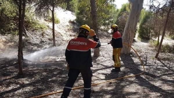 Incendio en la pinada de Guardamar