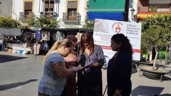 El psoe diputación recoge firmas ampliar cheque bebe y cambiar criterios