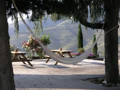 Cinco hoteles para disfrutar del enoturismo en Portugal
