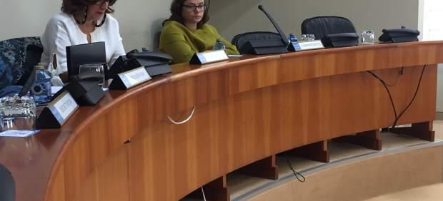 La directora de Atriga en el Parlamento