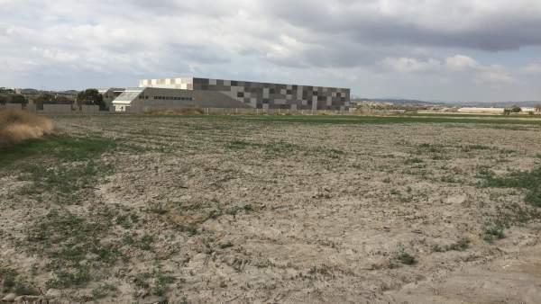 Terreno baldío junto a la desaladora de Villaricos, paralizada desde 2012