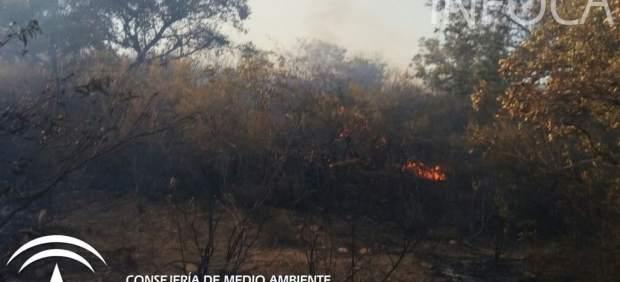 Incendio en El Ronquillo durante el jueves