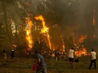 Incendio forestal en Vigo