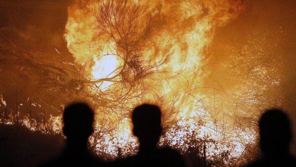 Grandes llamas en Chandebrito