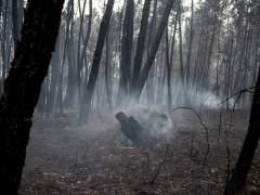 Trece espacios de la Red Natura 2000 se han visto afectados por los incendios del norte de España