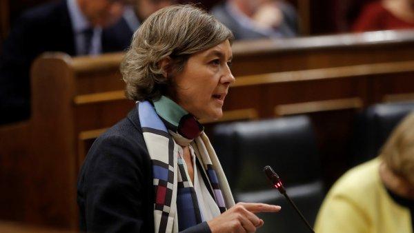 """Tejerina culpa a """"criminales"""" de los incendios"""