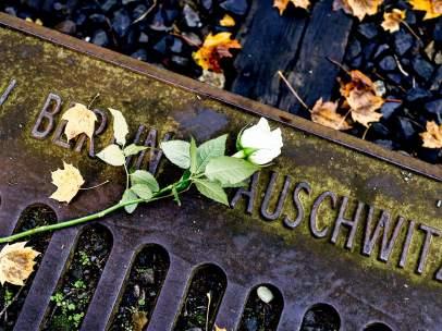 Flores por el Holocausto