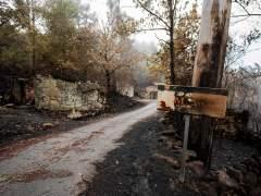 La ola de incendios de Galicia ha arrasado unas 35.500 hectáreas