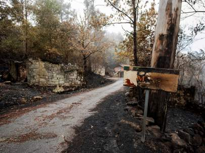 Hectáreas quemadas en Galicia