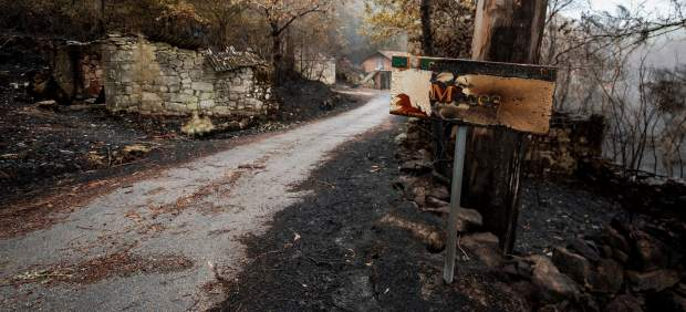 La ola de incendios de Galicia ha arrasado unas 35.500 hectáreas, más que en los tres últimos ...