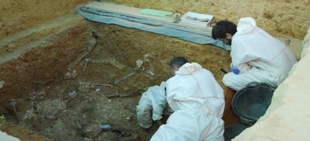 Exhumación de represaliados franquistas en la fosa 113 de Paterna (Valencia)