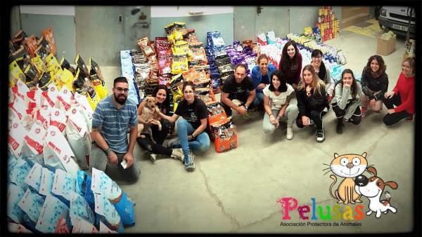 Voluntarios de Pelusas junto a los alimentos recogidos en Cuarte