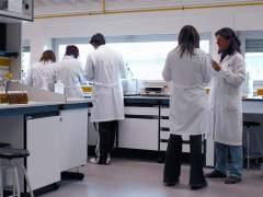 El tratamiento con antibióticos logra frenar el crecimiento del cáncer colorrectal en un experimento con ratones