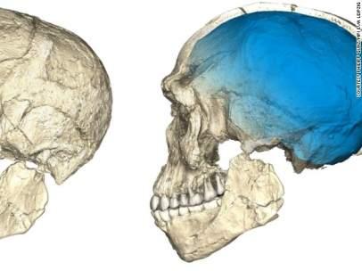 Fósil de Homo Sapiens